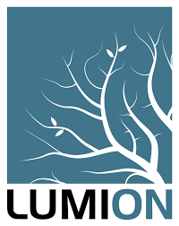 Lumion 9 Fissure